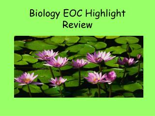 Biology EOC Highlight Review