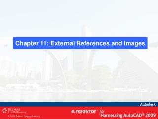 Chapter 11: External References and Images