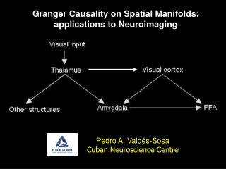 Granger Causality on Spatial Manifolds: applications to Neuroimaging