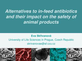Alternatives to in-feed antibiotics and their impact on the safety of animal products