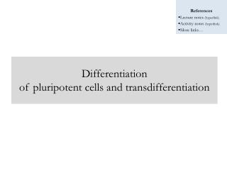 Differentiation of pluripotent cells and transdifferentiation