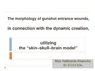 The morphology of gunshot entrance wounds,   in connection with the dynamic creation,   utilizing  the   skin skull brai