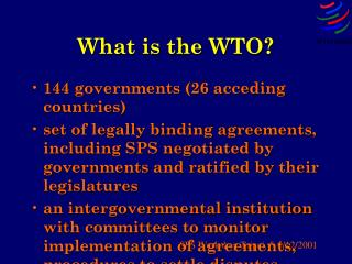What is the WTO?