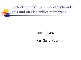 Detecting proteins in polyacrylamide gels and on electroblot membrane