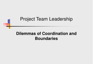 Project Team Leadership