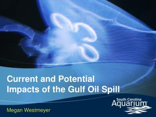 Current and Potential Impacts of the Gulf Oil Spill