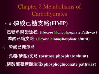 Chapter  3  Metabolisms of Carbohydrates