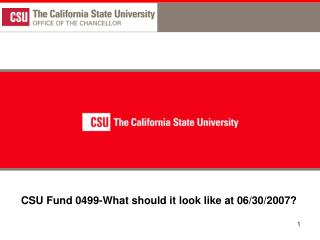 CSU Fund 0499-What should it look like at 06/30/2007?