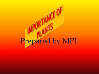 IMPORTANCE OF PLANTS