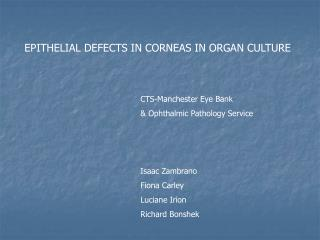 EPITHELIAL DEFECTS IN CORNEAS IN ORGAN CULTURE
