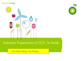 Industry Experience of CCS : In Salah