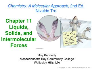 Chapter 11 Liquids, Solids, and Intermolecular Forces
