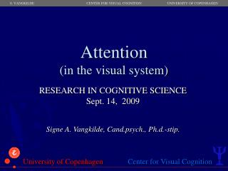 Attention (in the visual system)