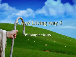 A new Living way 3