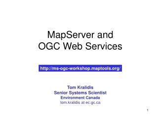 MapServer and OGC Web Services