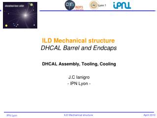 ILD  Mechanical  structure DHCAL Barrel and  Endcaps