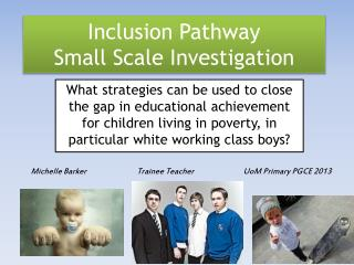 Inclusion Pathway Small Scale Investigation