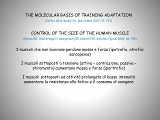 THE MOLECULAR BASIS OF TRAINING ADAPTATION (Coffey VG & Hawley JA, Sports Med 2007; 37: 737)