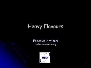 Heavy Flavours