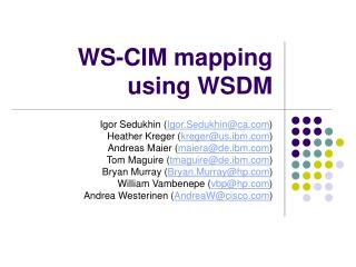 WS-CIM mapping using WSDM