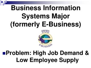 Business Information Systems Major (formerly E-Business)