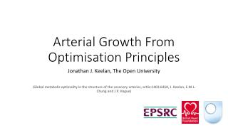 Arterial Growth From Optimisation Principles