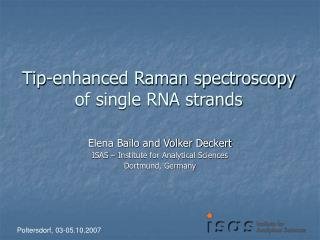 Tip-enhanced Raman spectroscopy of single RNA strands