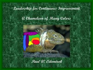 Leadership for Continuous Improvement A Chameleon of Many Colors