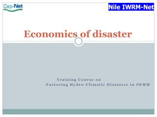 Economics of disaster