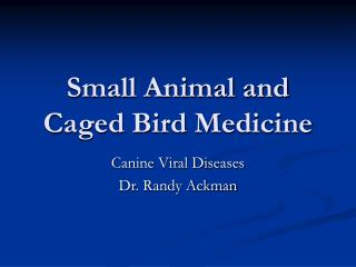 Small Animal and Caged Bird Medicine