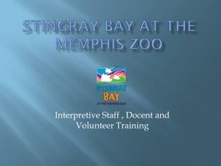 Stingray Bay at the Memphis Zoo