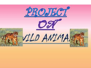 PROJECT  ON  WILD ANIMAL