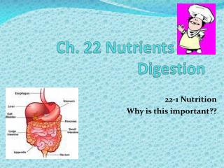 Ch. 22 Nutrients and Digestion