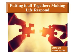 Putting it all Together: Making Life Respond
