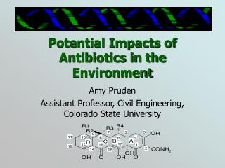 Potential Impacts of Antibiotics in the Environment