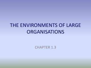 THE ENVIRONMENTS OF LARGE ORGANISATIONS