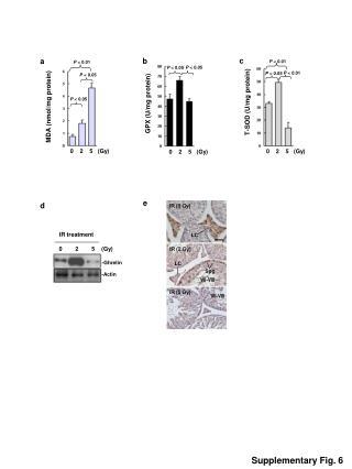 T-SOD (U/mg protein)