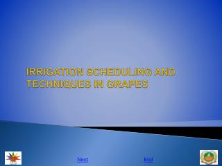 IRRIGATION SCHEDULING AND TECHNIQUES IN GRAPES