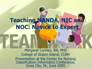 Teaching NANDA, NIC and NOC: Novice to Expert