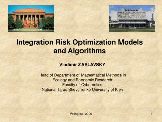 Integration Risk Optimization Models and Algorithms