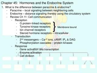 Chapter 45:  Hormones and the Endocrine System
