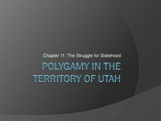 Polygamy in the Territory of Utah
