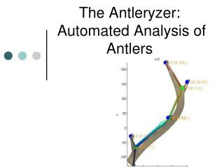 The Antleryzer:  Automated Analysis of Antlers