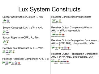 Lux System Constructs