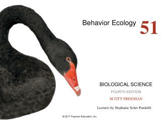 Behavior Ecology