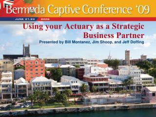 Using your Actuary as a Strategic Business Partner