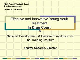 Effective and Innovative Young Adult Treatment In Drug Court