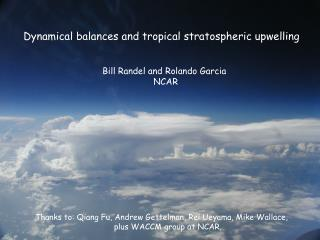 Dynamical balances and tropical stratospheric upwelling