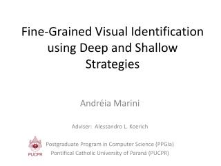 Fine-Grained Visual Identification using Deep and Shallow Strategies