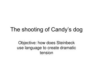 The shooting of Candy s dog
